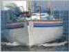 BPG060201-7227167-10-090306120619
