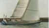 Wasa 530